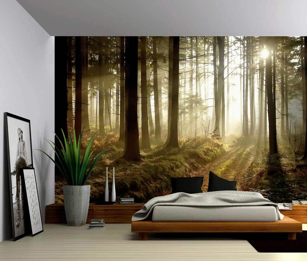 Autumn Forest Trees Self Adhesive Vinyl Wallpaper Peel