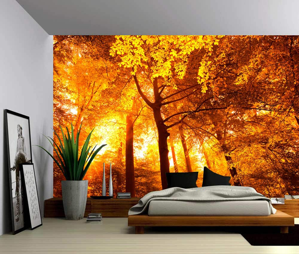 Wall Murals Product : Landscape sun trees autumn forest self adhesive vinyl