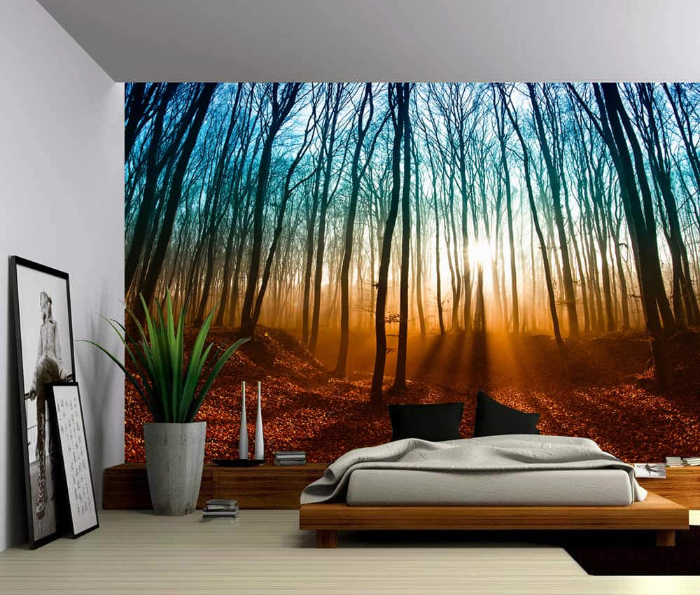 Wall Murals Product : Landscape autumn magical forest self adhesive vinyl