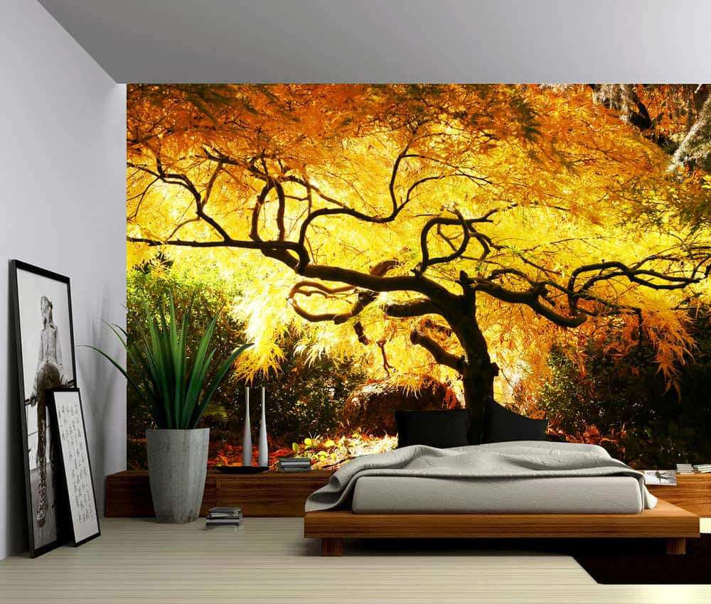Wall Murals Product : Sunlight maple tree self adhesive vinyl wallpaper peel