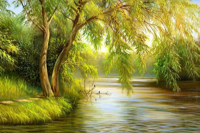 Tree River Bank Summer Landscape Self Adhesive Vinyl